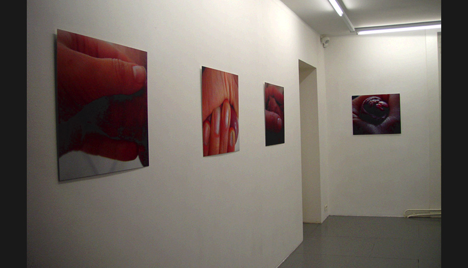Centre d 'Art Contemporain, Annemass, France, exhibition view, 2006