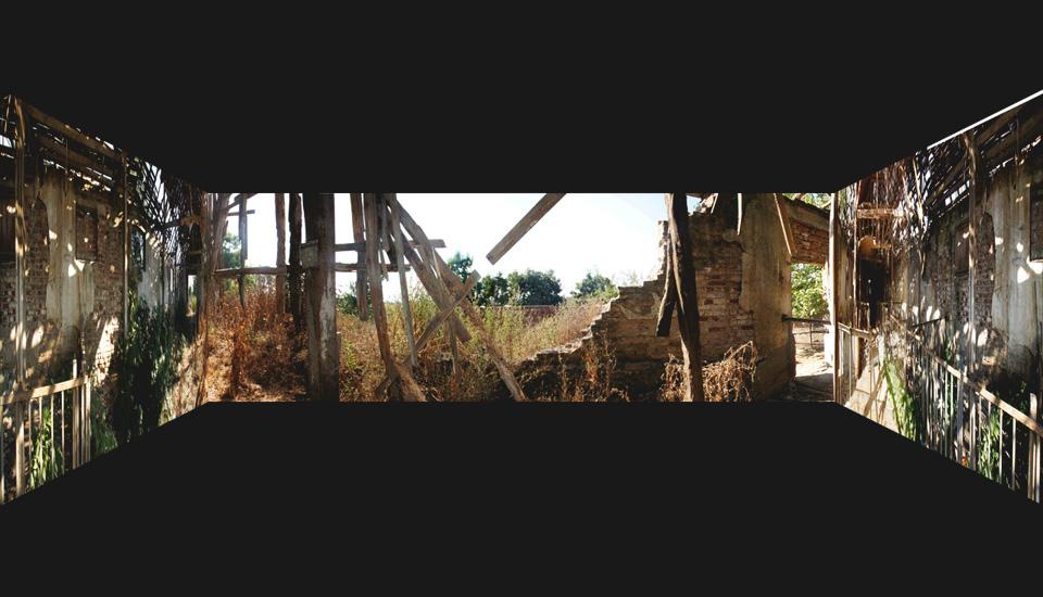 Long Nature, lambda on alluminium, 250 x 100 cm, 2009